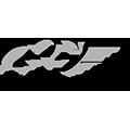 Logo Ligue Rhone Alpes de Vol libre